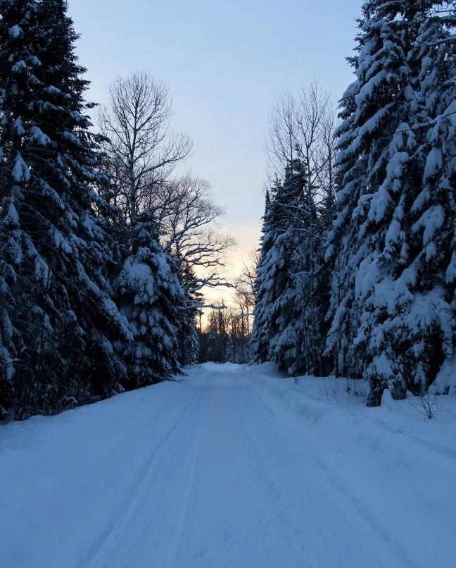 Moving to Northern Minnesota